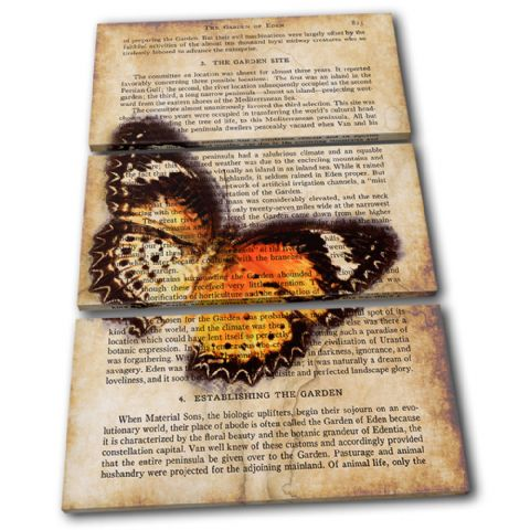 Butterfly Vintage Collage Animals - 13-6061(00B)-TR32-PO